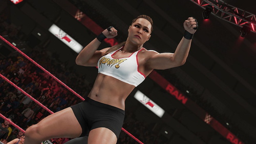 TAKE TWO XBOX ONE WWE 2K19 DELUXE EDITION 3