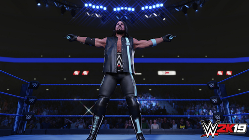 TAKE 2 PS4 WWE 2K19 9