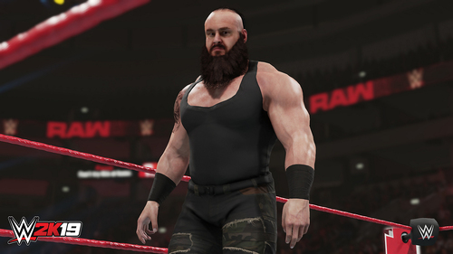 TAKE 2 PS4 WWE 2K19 11