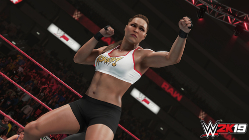 TAKE 2 PS4 WWE 2K19 13