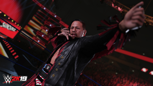 TAKE 2 PS4 WWE 2K19 15
