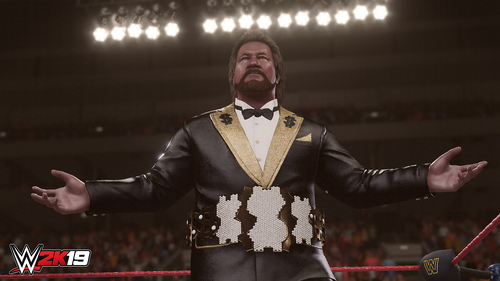 TAKE 2 PS4 WWE 2K19 19